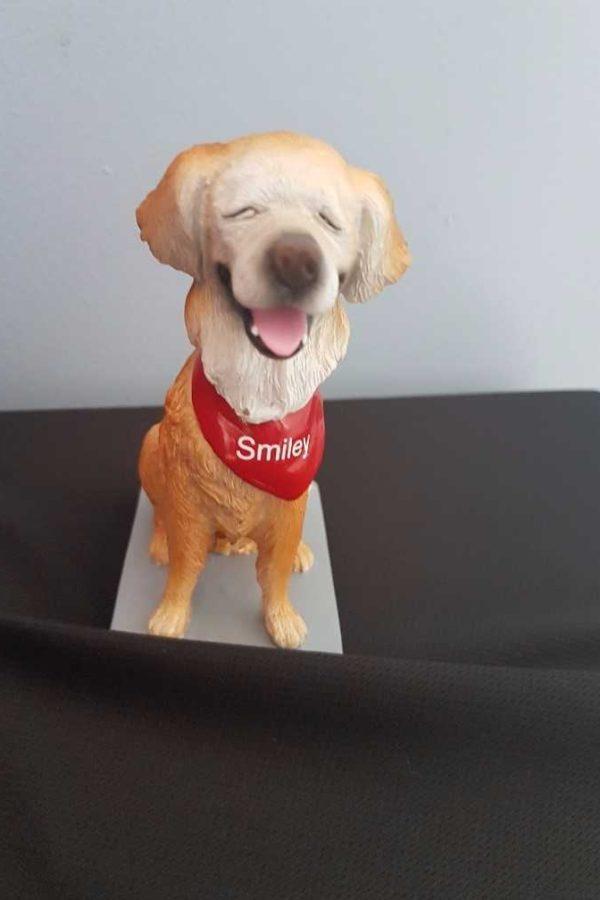 Smiley v1